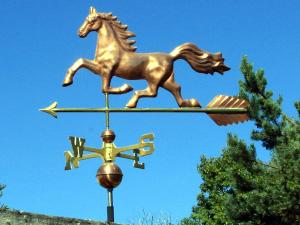 WF2001 Horse